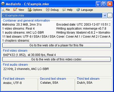 MediaInfo_GUI_Easy_en_Extract.png (26.26 KB)